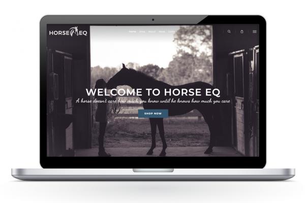 HEQ_home_3Single_websites_master